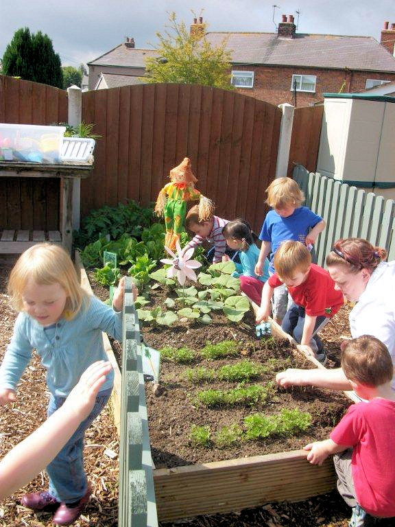 Growing our Vegetables